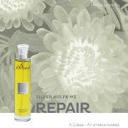libellulabio-altearahbio-argento riparazione
