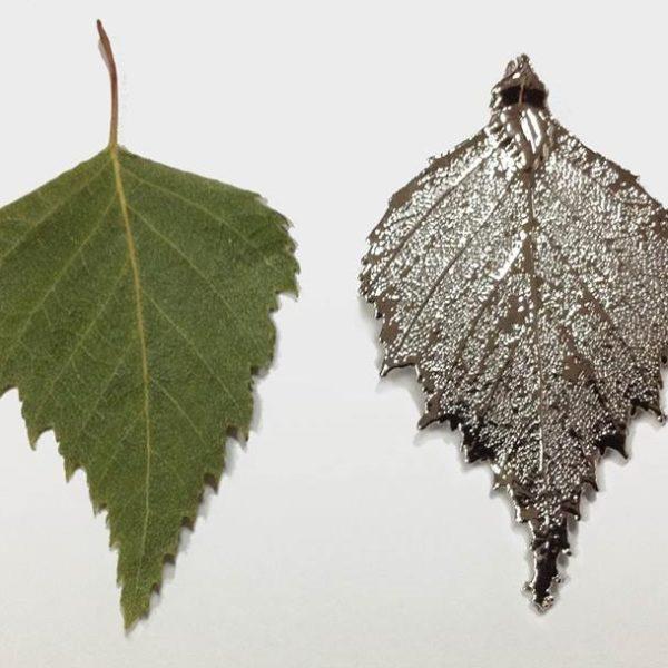 libellulabio esterbijoux betulla argento foglia