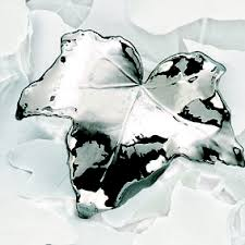 libellulabio esterbijoux edera argento