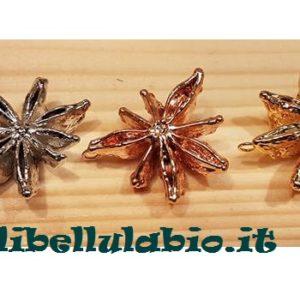 libellulabio-esterbijoux-anice-stellato-profumato